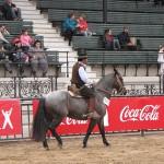 La Rural 2011