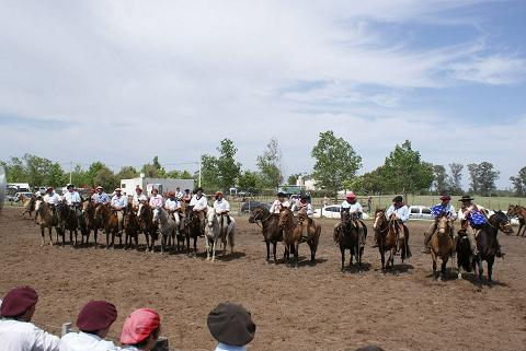 caballos-criollos