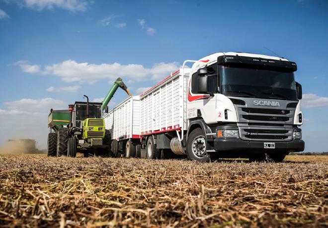 Scania-P250-DB-4X2