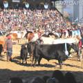 Campo a Pleno - La Rural 2014 - Inauguracion Oficial 3