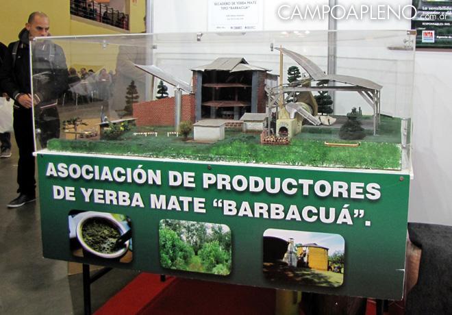 Caminos y Sabores - los secretos de la yerba mate tipo Barbacua 2