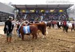 La Rural 2015 - Inauguracion Oficial 02