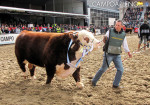 La Rural 2015 - Inauguracion Oficial 04