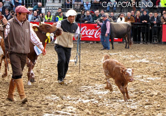 La Rural 2015 - Inauguracion Oficial 06