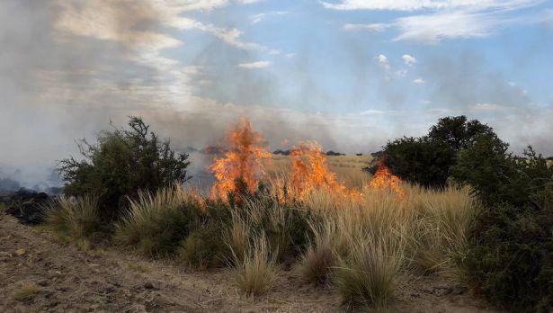 incendios-campos