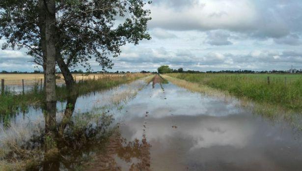 En las zonas inundadas de Buenos Aires cayó un 30% la venta de insumos para el agro.