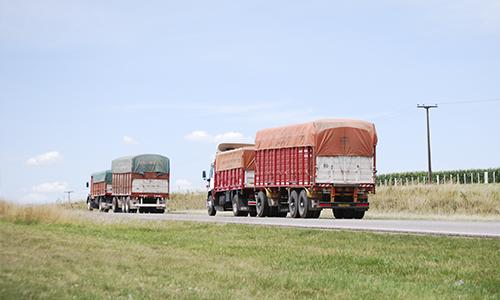 Desde el 29 de mayo regirá un sistema de turnos para descarga en puertos.