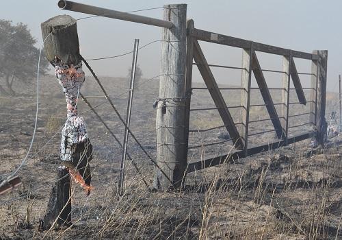 Incendio en Mendoza1