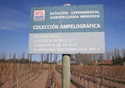 INTA. Estación experimental agropecuaria Mendoza