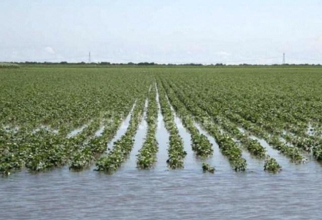 Inundación Chaco