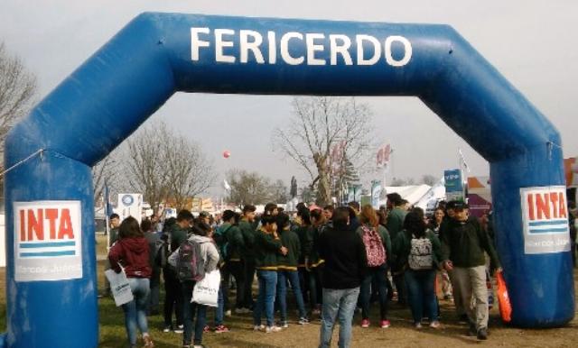 Fericerdo