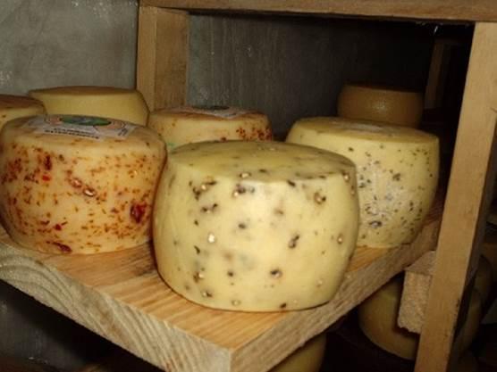 """Productores de queso artesanal acceden al sello """"Producido por la Agricultura Familiar""""."""