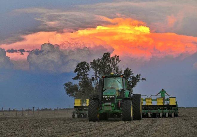 Se sembraron 600 mil ha de maíz en solo 7 días y es un nuevo récord.